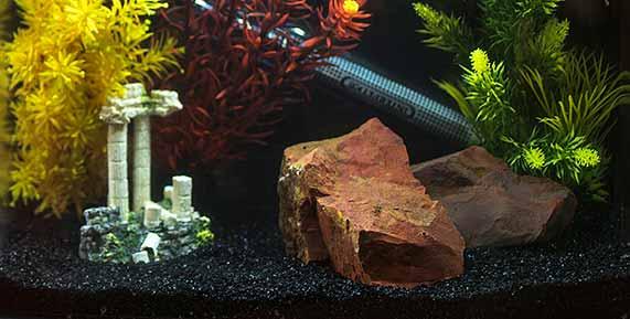 Interpet Aquarium Decoration Gravel And Fish Tank Ornaments Interpet Life Usa